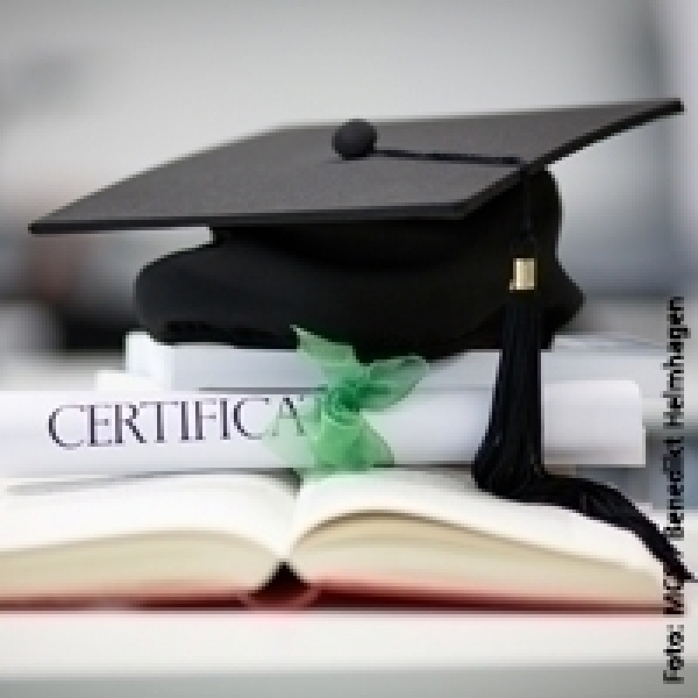 Master Master of Business Administration (MBA), Master in Controlling (MBA) - Schwerpunkte / Curriculum